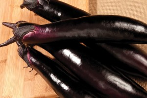 Eggplant 'Shikou' (Sakata Seed America)