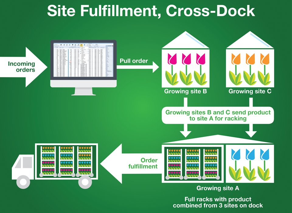 With SBI Software's site fulfillment software, growers can choose to cross dock, meaning racks are built for a single order at multiple sites and are cross-docked without any re-assembly