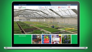BallSeed New Website September 2015