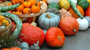 How To Display And Sell More Pumpkins