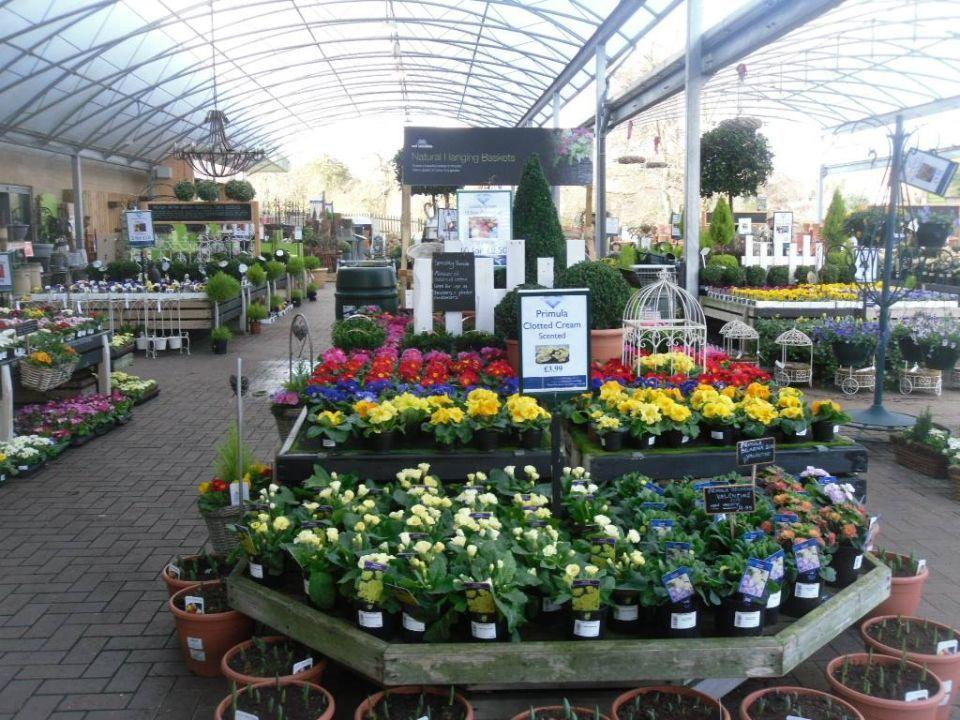 Garden Center Display Ideas - Garden Ideas