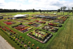 2015 C. Raker and Sons Field Trials_aerial view