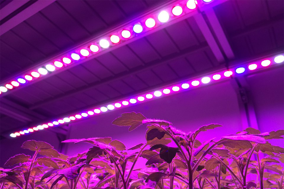 15 Led Lighting Solutions For Your