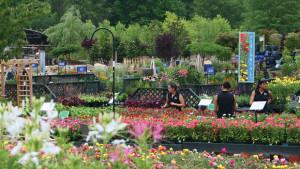 garden center plant yard The Farm at Green Village