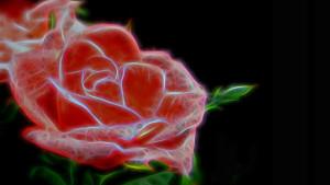 Cyborg Rose
