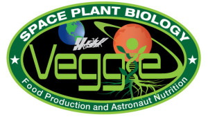 NASA Space Station Veggie Patch