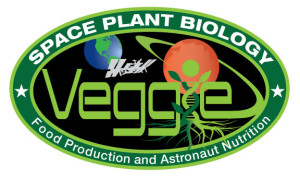 NASA Space Station Veggie Patch