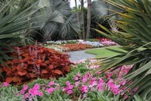 Costa Farms' Trial Gardens
