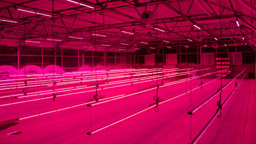 Philips Lighting, Colorado State University Partner On New LED Lighting Research And Training Center
