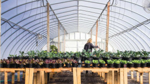 Fertilizer Manufacturers Aim To Deliver Sustainable Solutions
