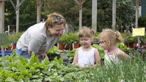 Customers at Lakeview Nurseries FEATURE