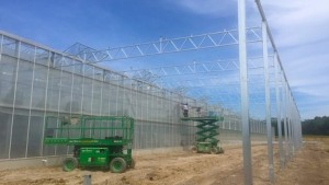 """Great Lakes Growers Expands Its Production Capacity For """"Living"""" Lettuces And Herbs"""