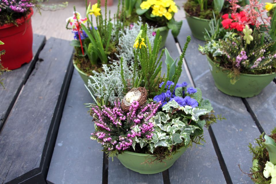 Winter Combo Garden Ideas From Minter Country Gardens Photo