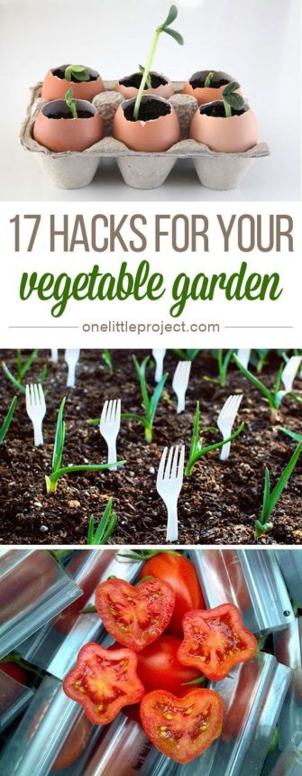17 Hacks For Your Vegetable Garden Pinterest pin