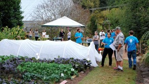How The Greenhouse Industry Can Propagate Gardeners The Same Way It Propagates Plants