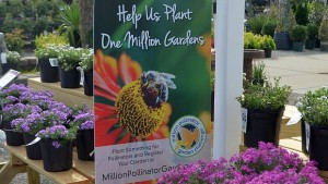 Million Pollinator banner FEATURE