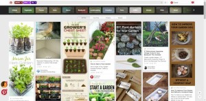 Pinterest screen cap of Garden Ideas DIY