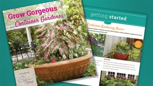 Costa Farms Targets Consumers With New Container Gardening E-Book