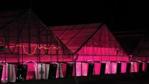 New Colorado State University Greenhouse Showcases LED Technology
