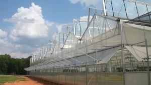 Dual Atrium Greenhouse (Nexus)