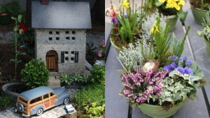 Fairy garden vs container garden FEATURE