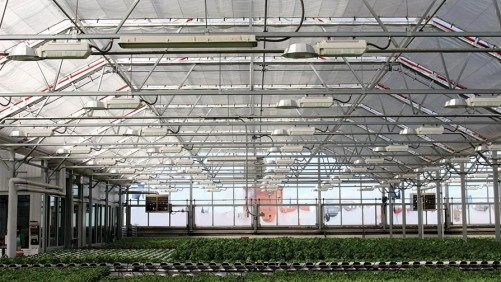 Gotham Greens Building Second Greenhouse in Suburban Chicago