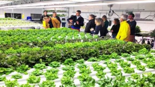 Growers Supply Hosting Two Workshops On Controlled Environment Production