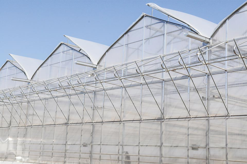 Amazing The Latest Developments In Greenhouse Structures Home Remodeling Inspirations Genioncuboardxyz
