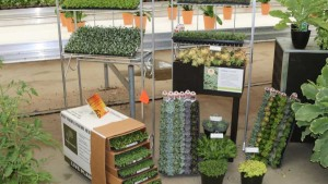 AmericanHort's Plug And Cutting Conference Will Feature Education, Workshops, And A Tour