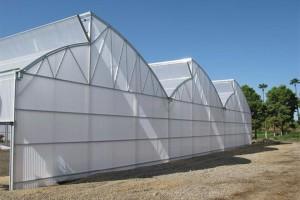 Zephyr Greenhouse (Nexus)