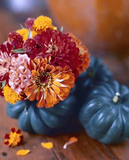 Cut Flower Creativity