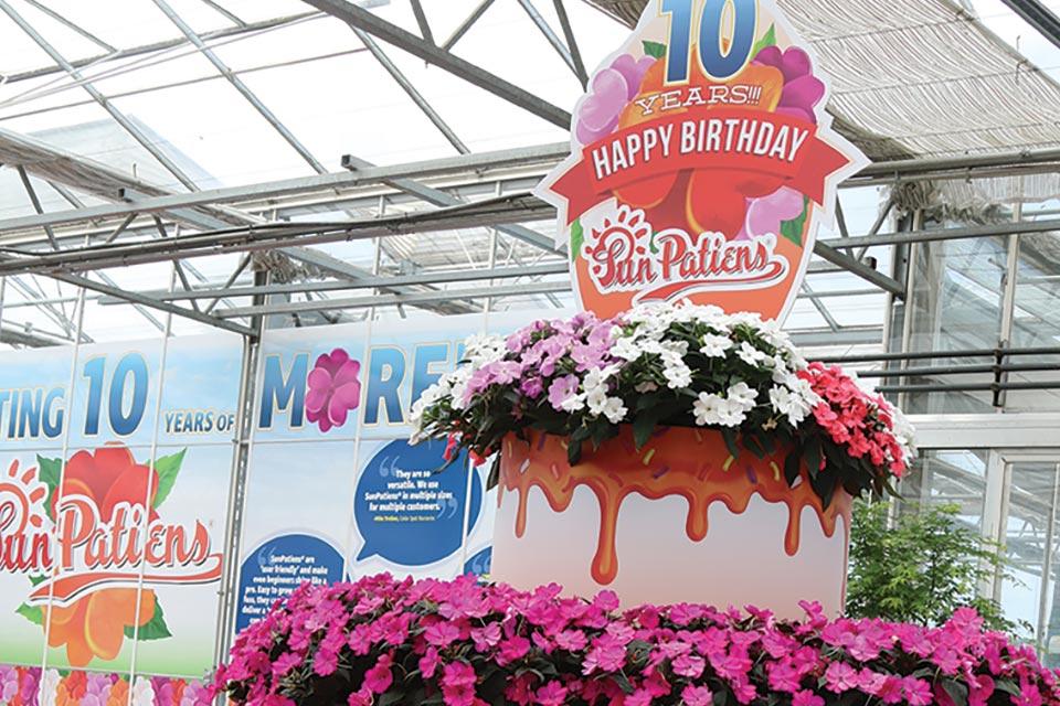 Sakata Birthday Cake
