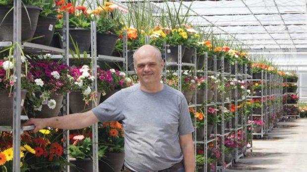 Albert Grimm, Jefferys Greenhouses