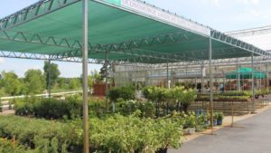 Fire Destroys Greenhouses At Oconomowoc Landscape Supply & Garden Center