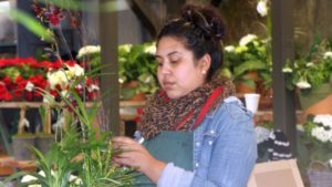 Rogers Gardens employee container garden assembly FEATURE