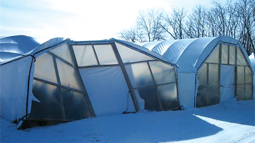Snow Damage-feature polar vortex