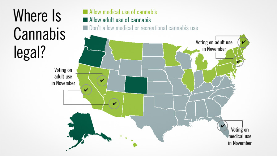 Medical Marijuana States Map 2016.Adult Use Of Cannabis On The Ballot In 2016 Greenhouse Grower