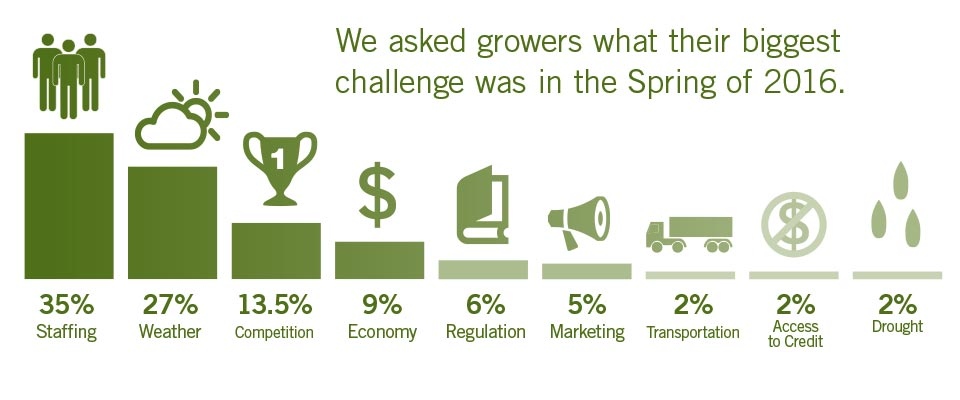 Spring Crops Survey Chart2