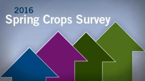 Plants Sales Are Up For Fourth Straight Year, According To Spring Crops Survey