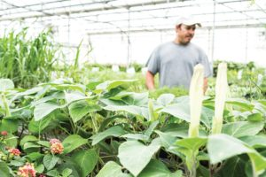 Growers Exchange Production Schedule