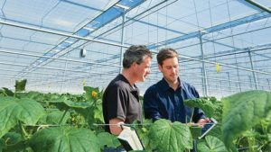 Webinar to Tackle Climate Control in the Greenhouses