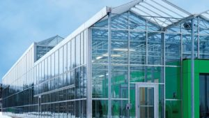 Canadian Greenhouse Conference Features Focus on Technology