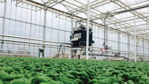 Be Sure to Register for AmericanHort's Production Technology Conference