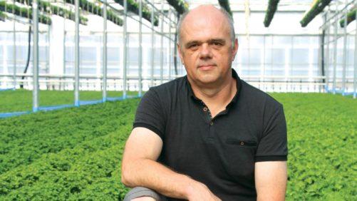 Award-Winning Greenhouse Growers Offer Labor-Saving Solutions