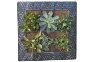 Elstra AquaSav Vertical Wall Planter from Pride Garden Products