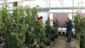 Learn Tips On Greenhouse Management During Growers Supply's Fall Workshops