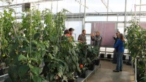 Growers Supply Workshop