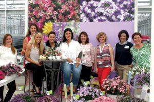 Luxflora Networking