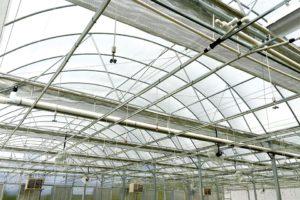 Merchney Greenhouse at ArborGen