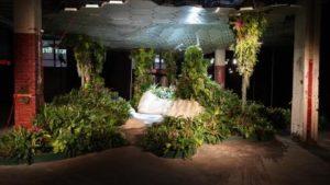 John Mini Distinctive Landscapes Takes Home Plantscape Of The Year Diamond Award